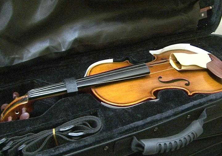 violina_5725