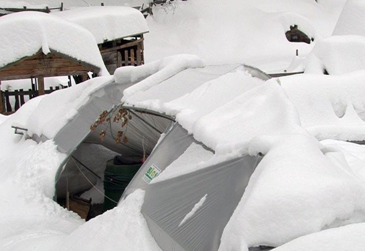 plastenik pod snijegom